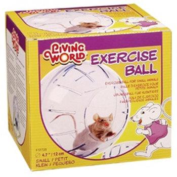 Balle d'exercice Living World 4.7po (diamètre)