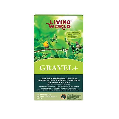 Gravel+ (digestion) pour oiseaux à bec droit Living World 850gr