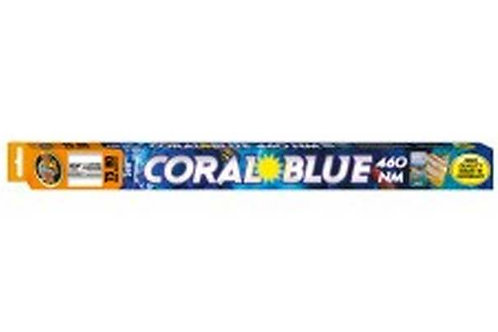 """Fluorescent Zoo Med Coral Bleu 460nm T5-HO - 24 W - 22 """""""