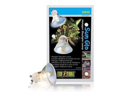 Ampoule halogène de jour SunGlo 35W ExoTerra