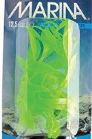 Hygrophila VibraScaper Marina, vert phosphorescent (5 po)