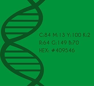 Palette verde_Tavola disegno 1.png