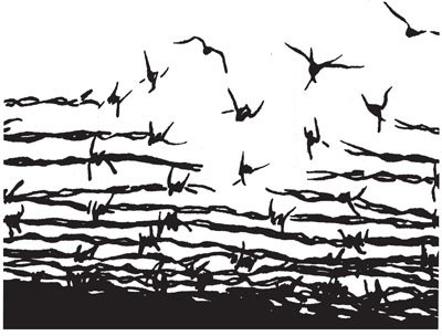 Liberdade De Pensamento