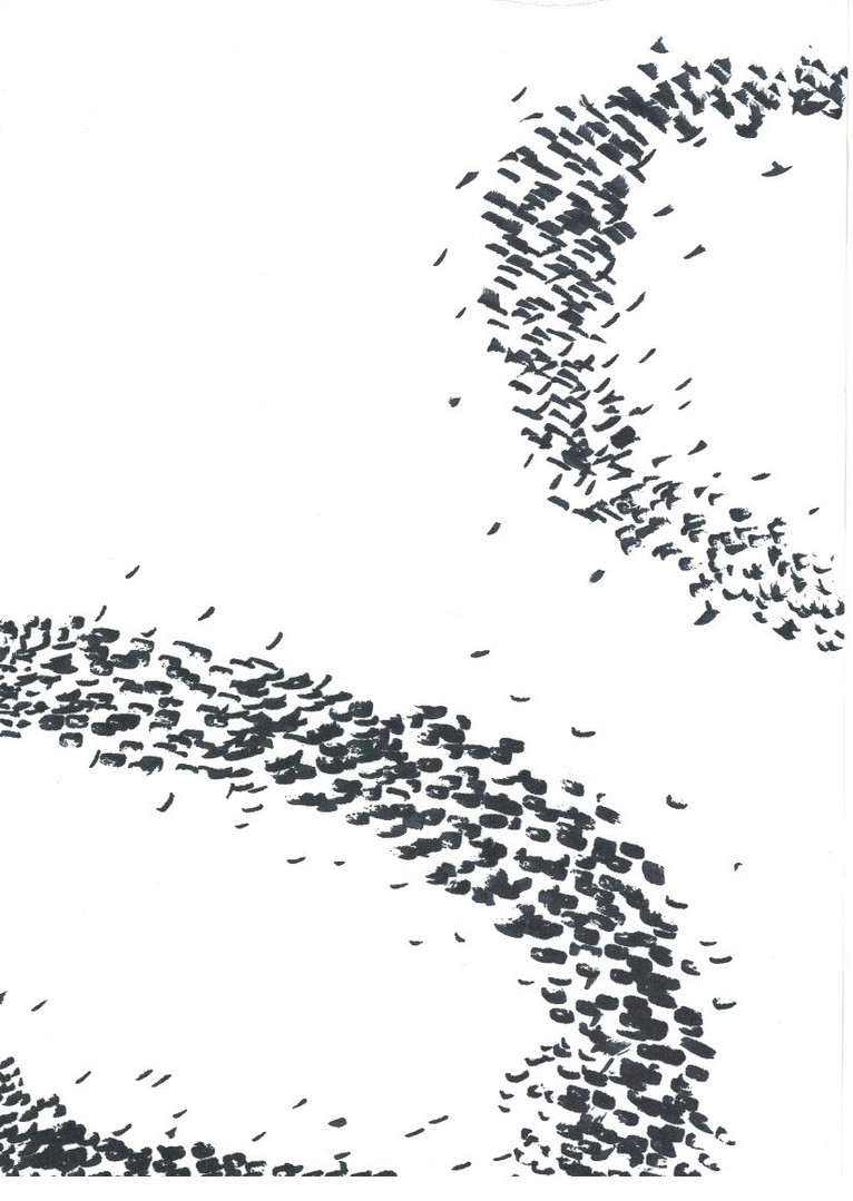 5-BIRDS OF PARADISE.jpeg