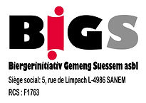 LOGO_BIGS_version finale.jpg