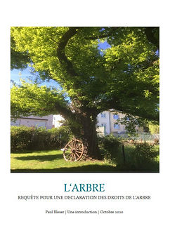 Cover_Requete_Arbre.jpg