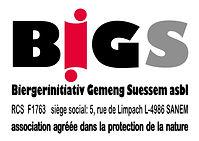 LOGO_BIGS_version finale_trans.jpg
