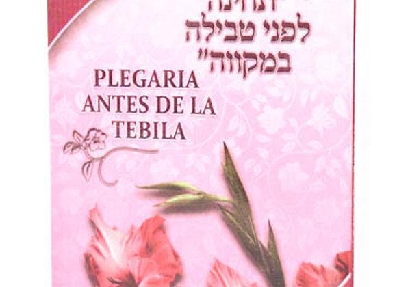 Tebila
