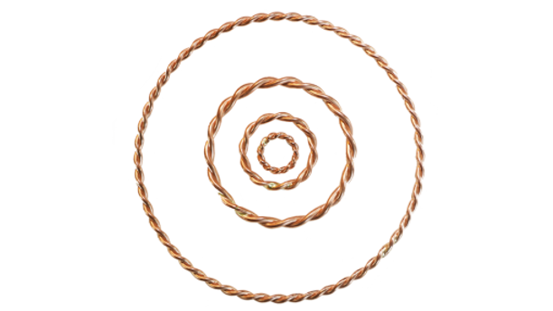 Golden Fire Rings - Twisted Sage