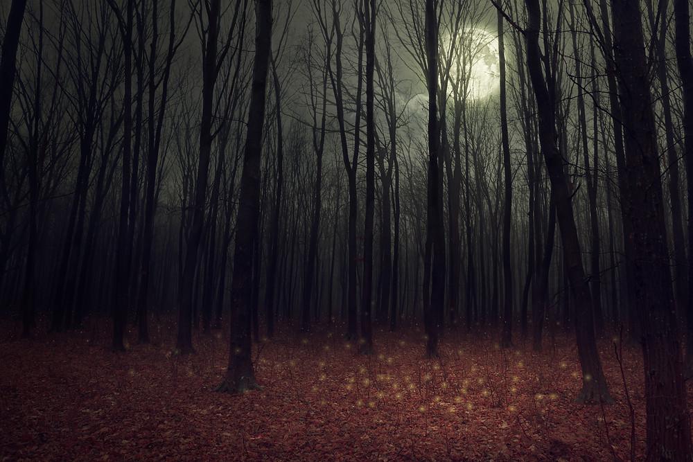 Deeper Step Toward Darkness