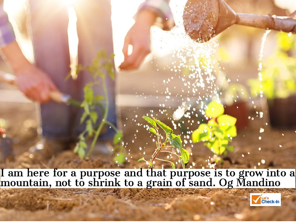 I am here for a purpose and that purpose is to grown into a mountain, not shrink to a grain of sand. - Og Mandino | Image - iStock