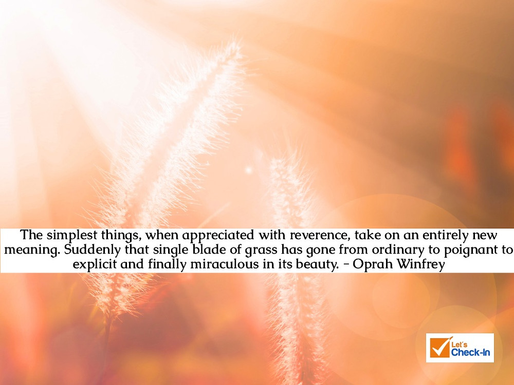 """""""the simplest things, when appreciated with reverence, take on an entirely new meaning. Suddenly that single blade of grass has gone from ordinary to poignant to explicit and finally miraculous in its beauty."""" Oprah Winfrey 