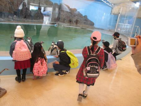 ★新屋島水族館★