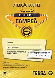 CAMPANHA_ESCOLHIDA_MRA_EQUIPE_CAMPEÃ_TE