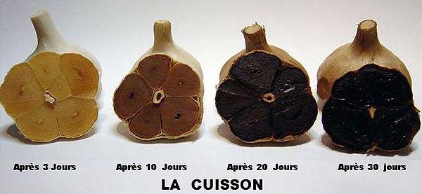 cuisson-ail-noir_edited.jpg