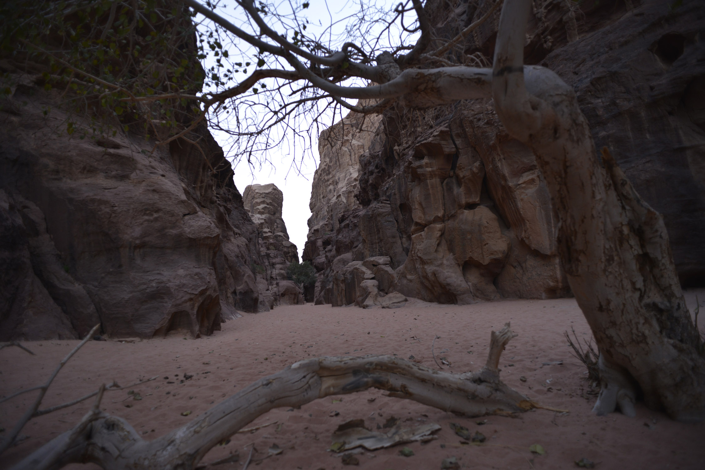 Al Mahama Canyon
