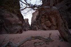 Al Mahama Canyon