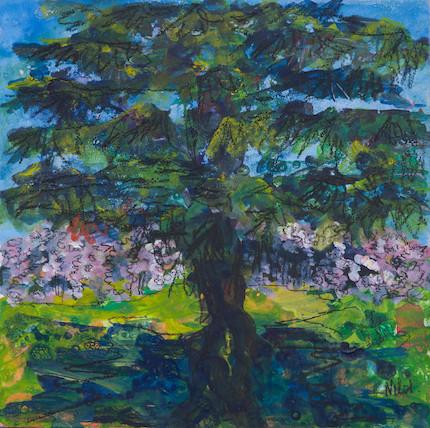 Cherry Blossom Lauriston Castle