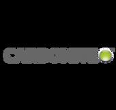 carbonite-logo.png