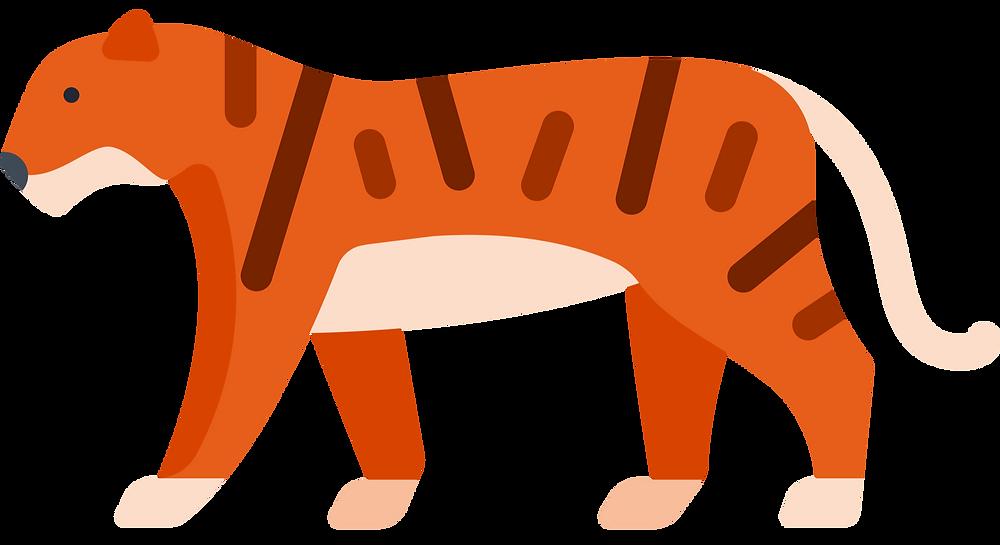 practical money skills: a tiger