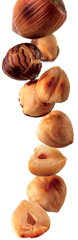 4.roasted hazelnut-image.jpg