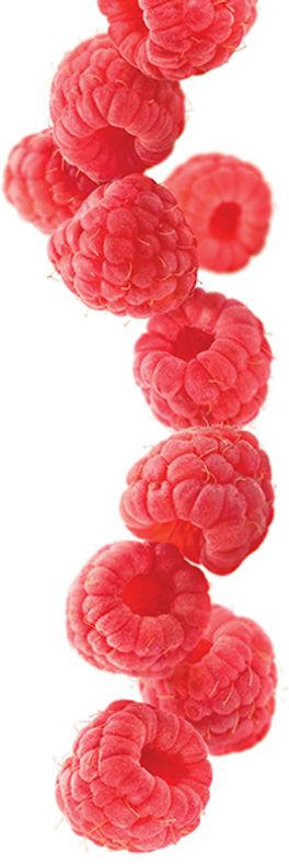 21.rapsberry-image.jpg