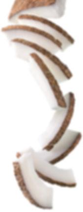 8.coconut-image.jpg