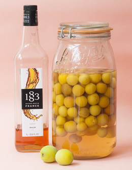 梅の季節にラムシロ梅酒
