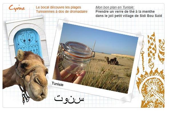plan_Tunisie_fr.jpg