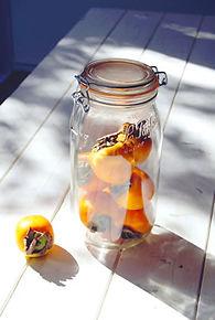fruit21.jpg