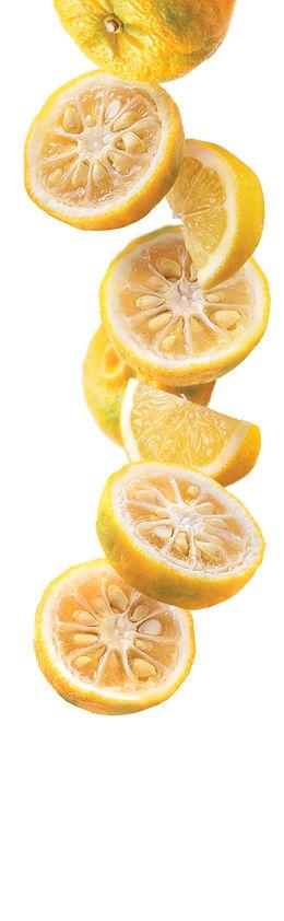 0f915b22_1883-yuzu-lemon.jpg