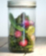 legume48.jpg