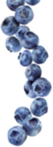 10.blueberry-image.jpg