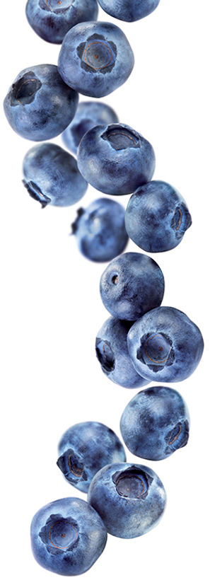 10.blueberry-image.jpg