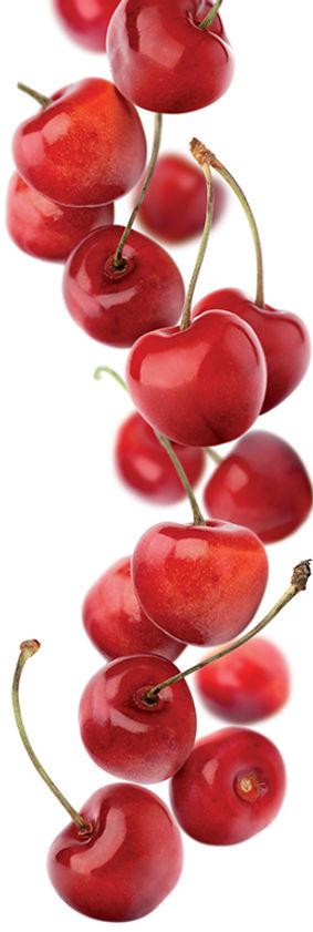 25.cherry-image.jpg