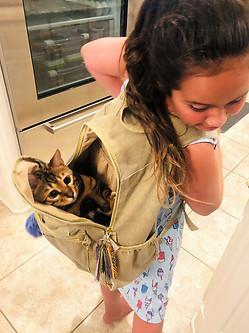 Katznjamr Alex Backpack Ride