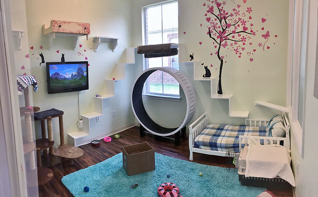 Whiskers Playroom Cat Suite