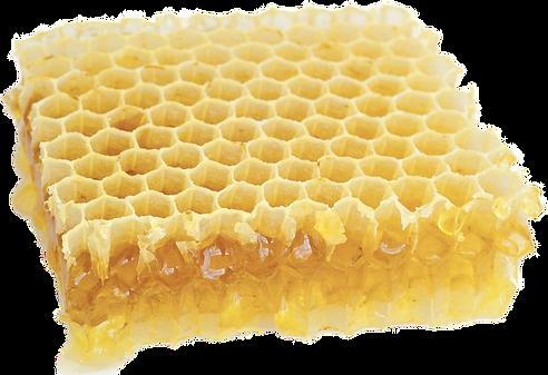 honeycomb cutout.png