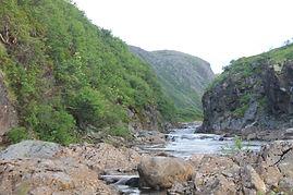 река Зарубиха.JPG