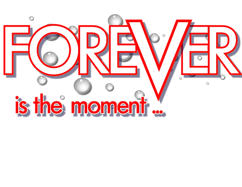 Forever in the moment 3.png