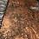 Thumbnail: Golden Copper