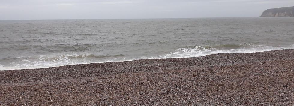 grizzly beach sat landscape.jpg