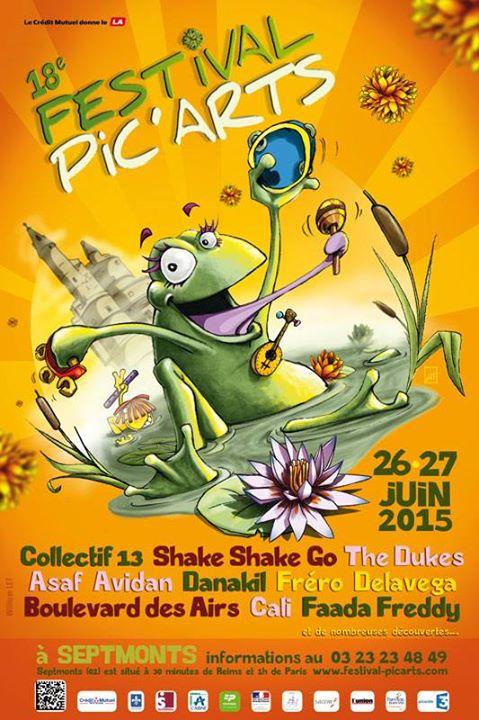 Festival PIC'ARTS 2015