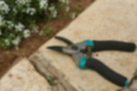 Gardening Shears fall pruning
