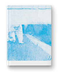 Cover of book showing only the cyan colour