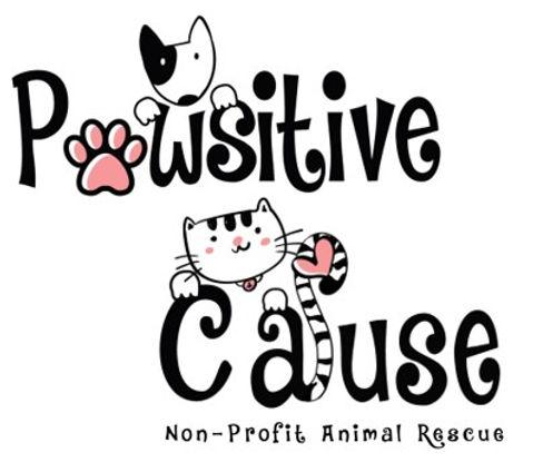 Cause Logo Edited(3).jpg