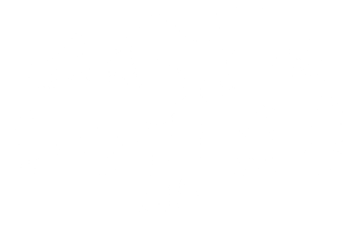 orchestra pit white 4.png