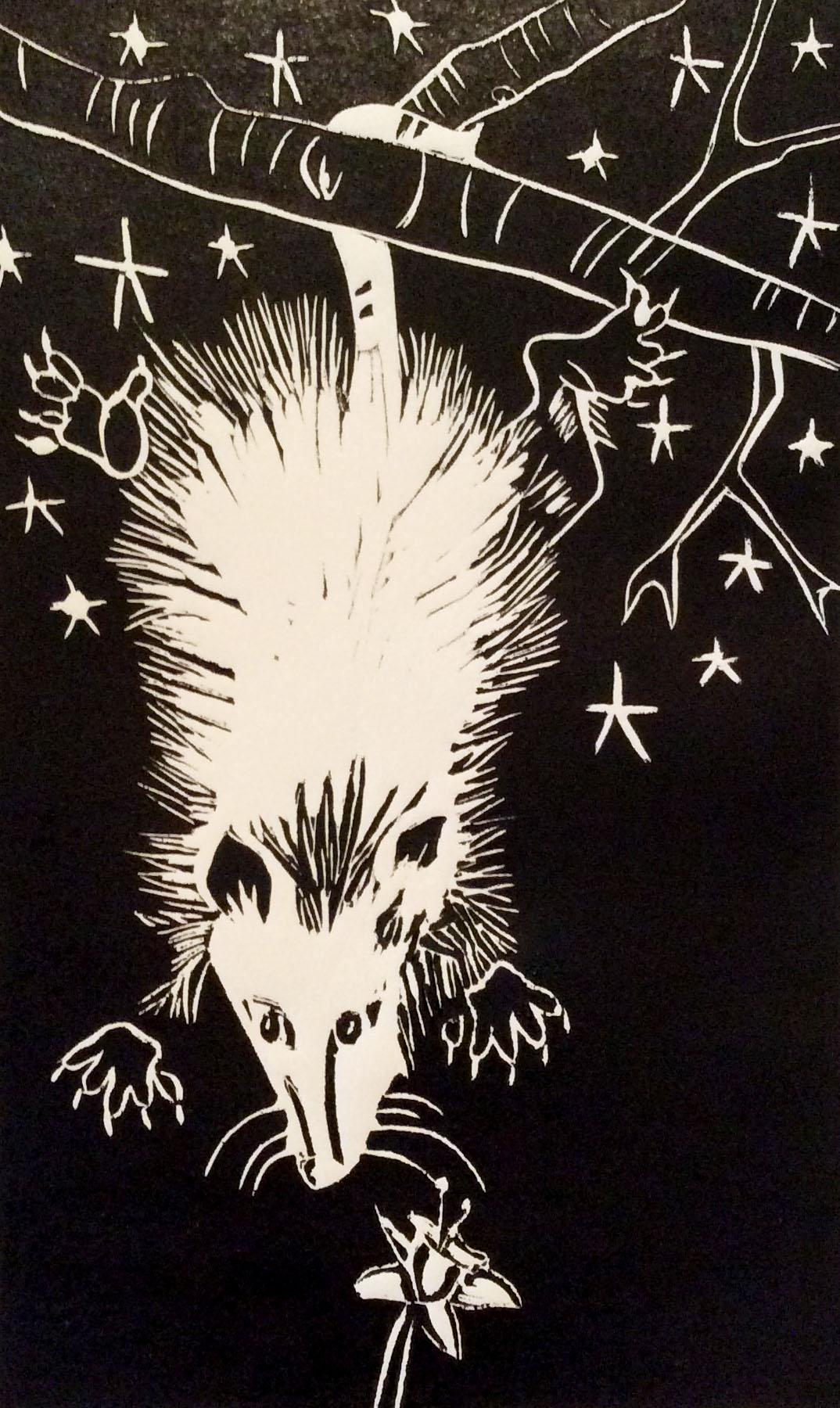 Opossumv1