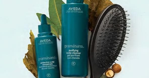 Pramasana exfoliating scalp brush, Pramasana purifying scalp cleanser, Pramasana protective scalp concentrate