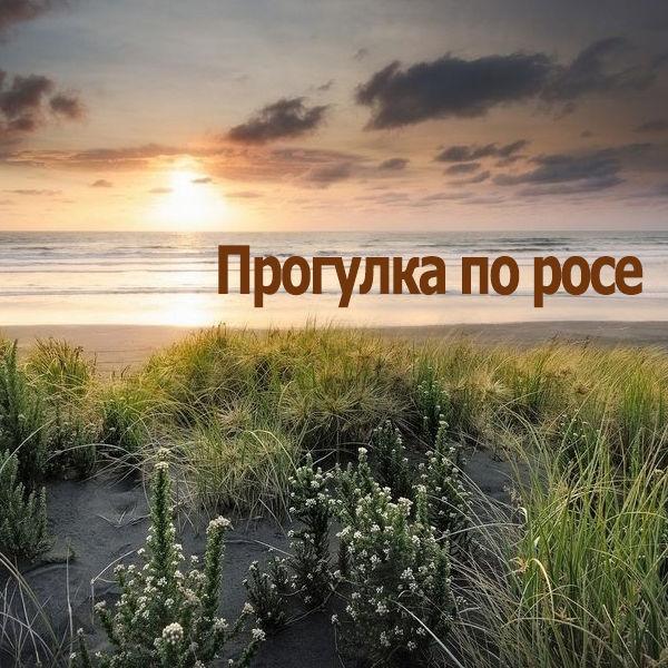 Progulka_Po_Rose.jpg